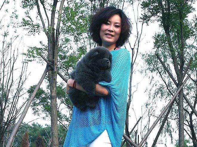 蓝色松狮犬图片1个半月松狮幼犬母蓝色松狮犬图片4