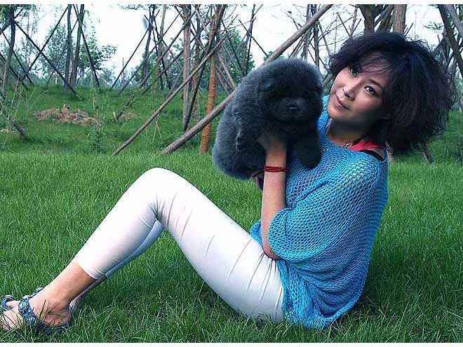 蓝色松狮犬图片13年松狮幼犬母蓝色松狮犬图片