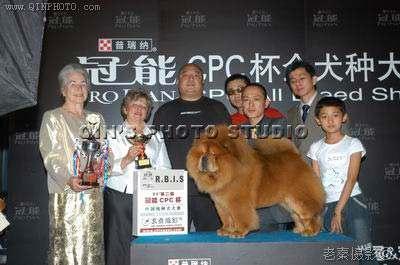 05年现金CASH获第二届冠能杯CPC杯全场总冠军