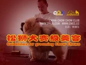 肖绪东讲赛级松狮犬的美容视频 CNCC中国松狮俱乐部