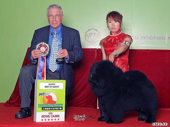 2010年3月13日-14日中国犬赛黑金获全场总冠军BIS