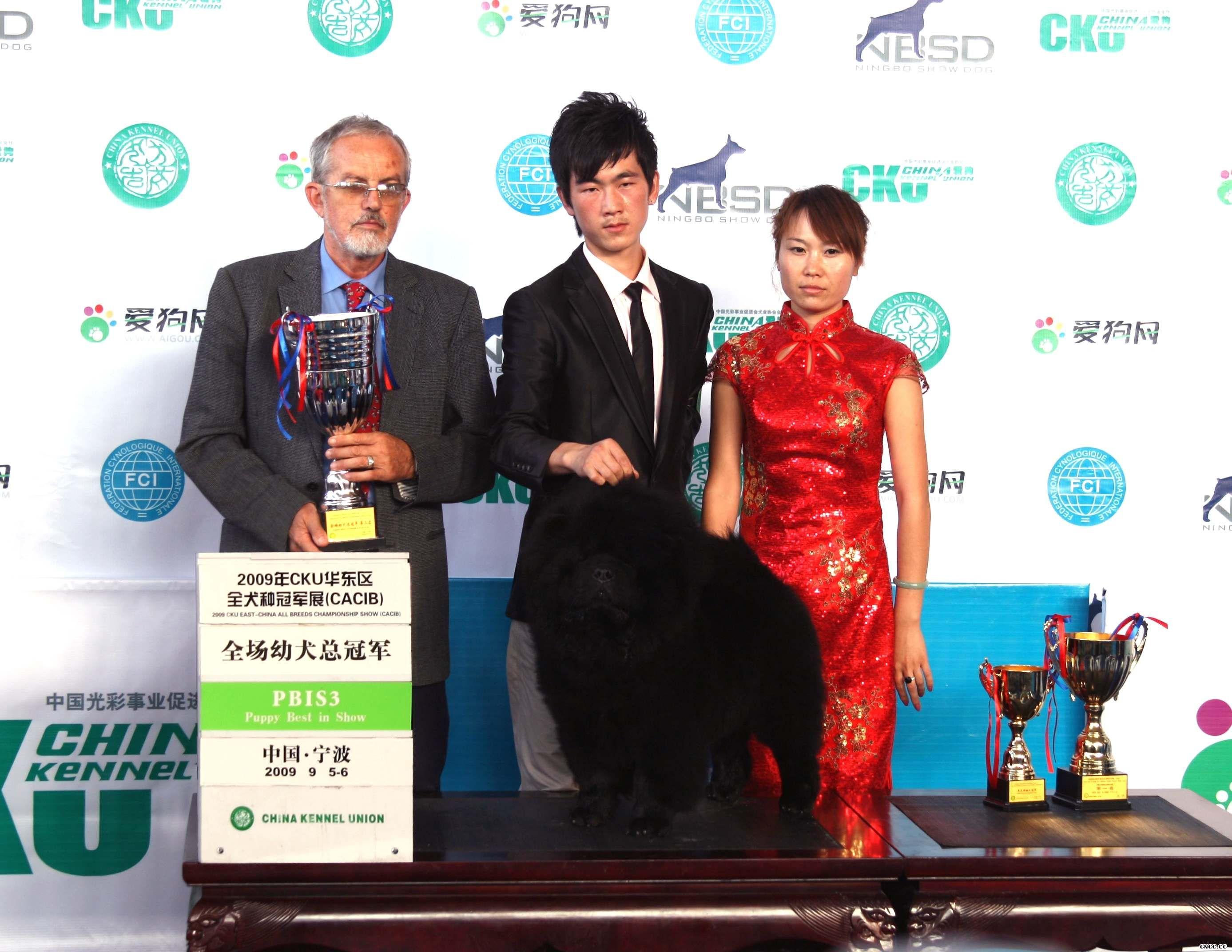 黑牛获FCI华东区全犬种国际冠军展全场总冠军图片