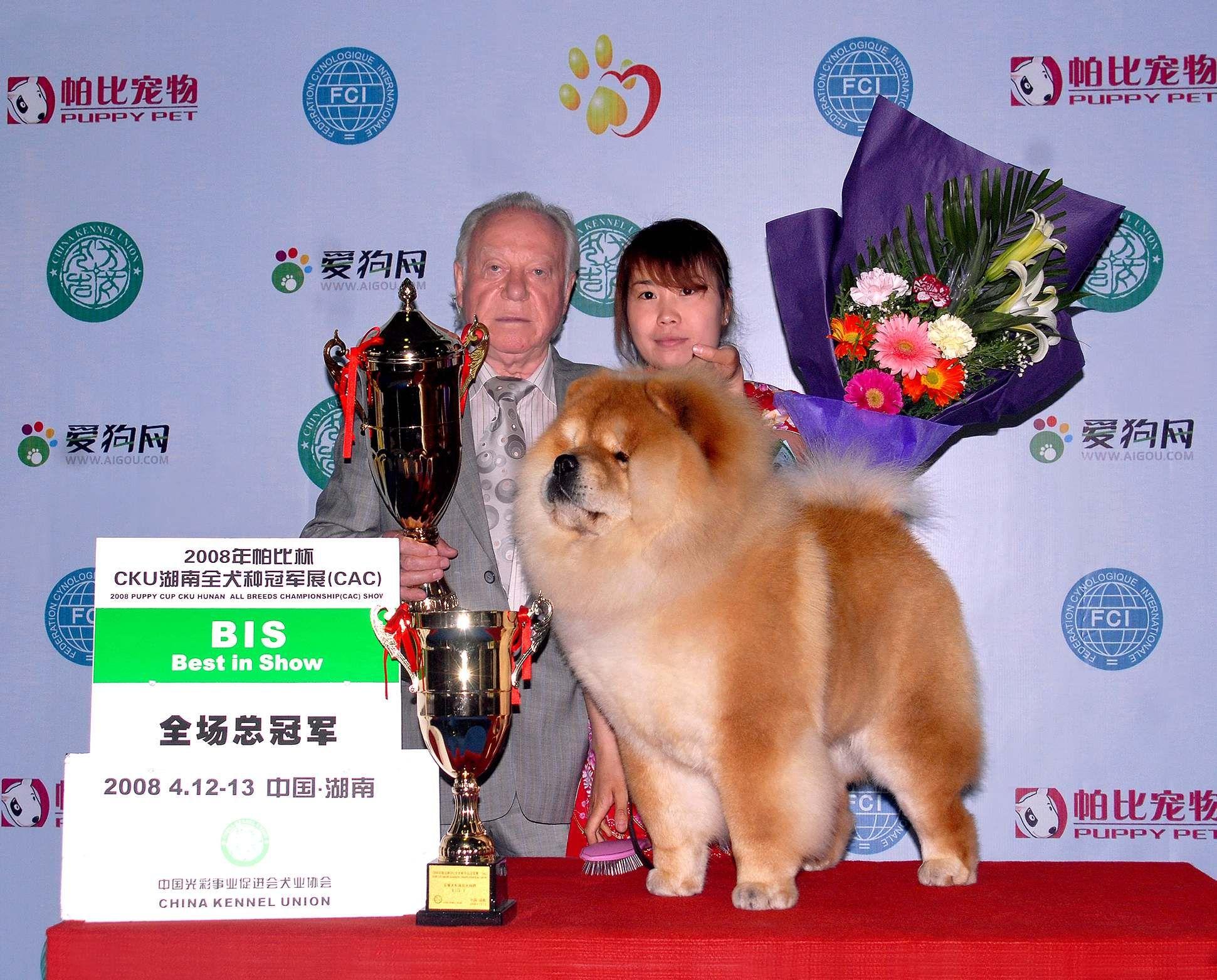 HOPE获长沙FCI全犬种冠军展全场总冠军BIS图片