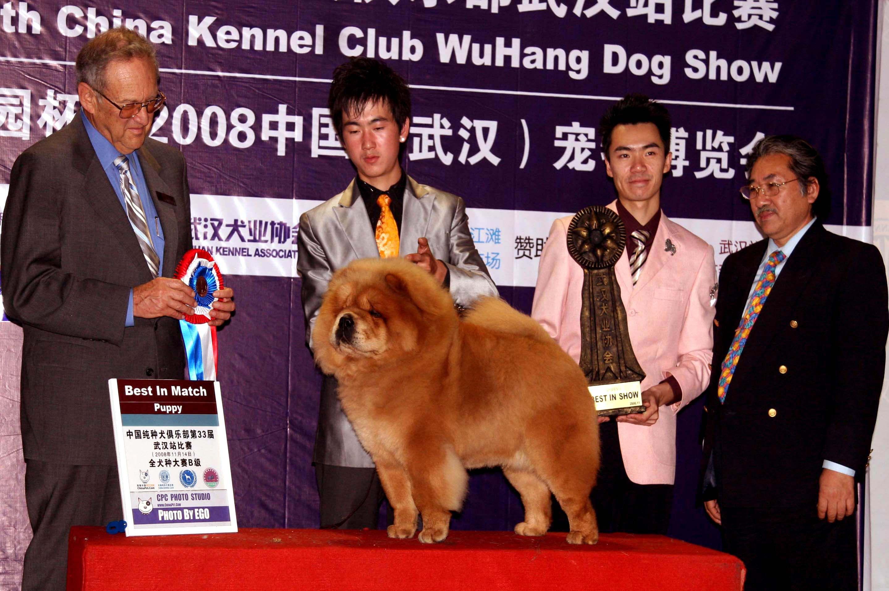 统帅LEADER获武汉宠物博览会全场总冠军图片
