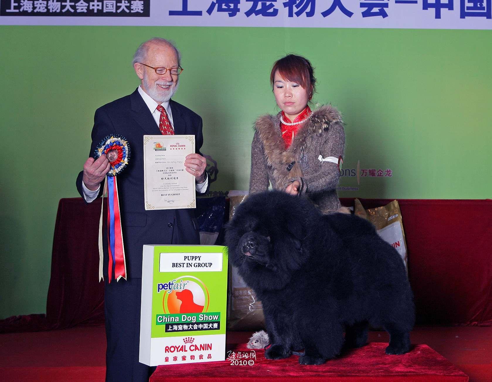 中国犬赛黑金获全场总冠军BIG