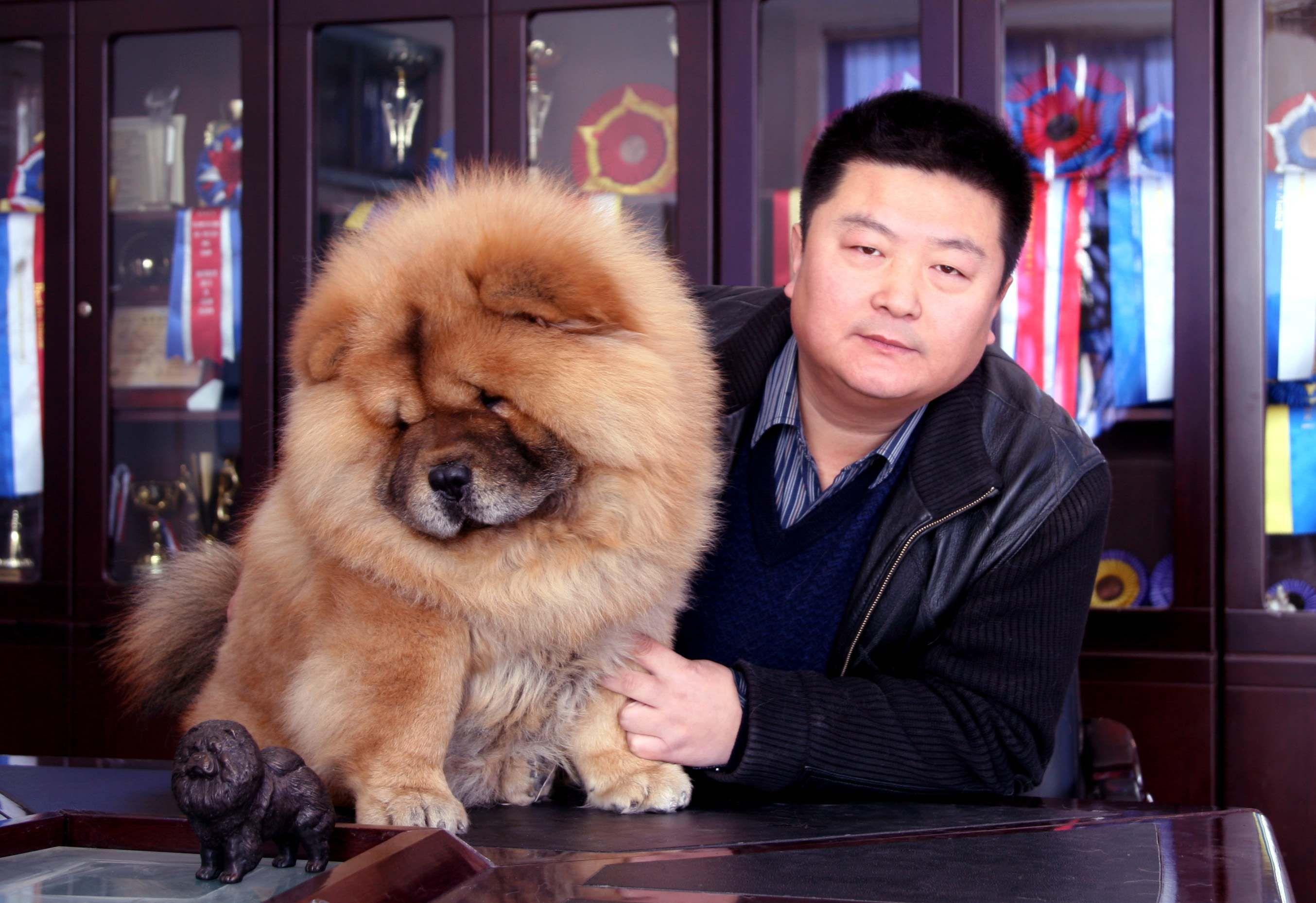 宠物杂志专用25925郭立亚3照片图片